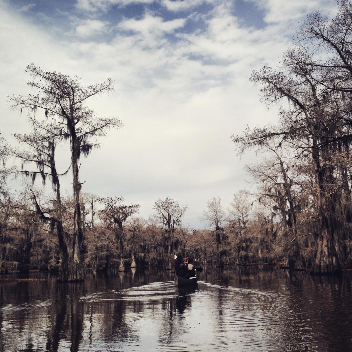 9 Karnack Texas Caddo Lake State Park 52 Cities